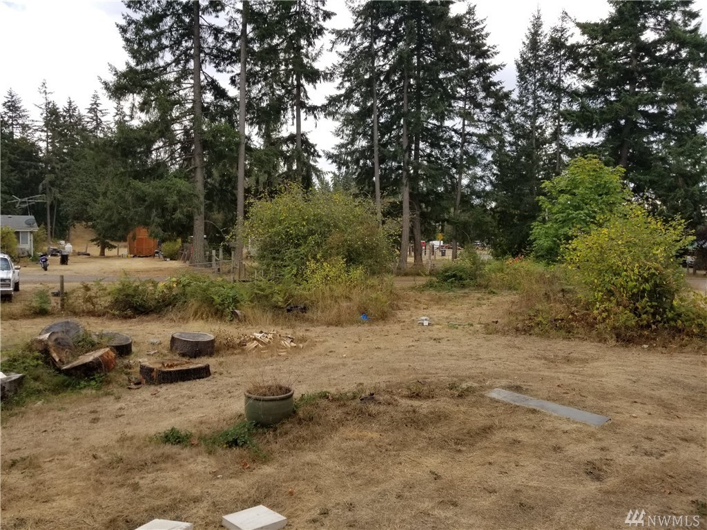 33717 85th Ave S Roy, WA 98580 - MLS #: 1358631